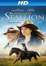 midnight_stallion movie cover