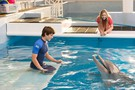 Dolphin Tale 2 movie photo