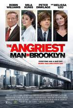 the_angriest_man_in_brooklyn movie cover