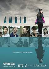 amber_2014 movie cover
