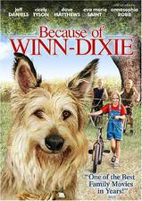 because_of_winn_dixie movie cover