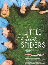 little_black_spiders movie cover