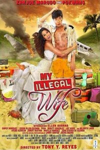 My Illegal Wife main cover