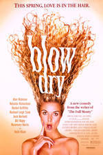 blow_dry movie cover