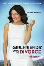 girlfriends_guide_to_divorce movie cover