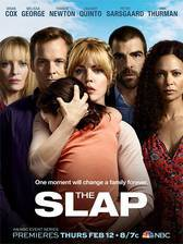 the_slap_2015 movie cover
