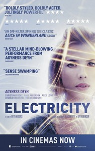 Electricity main cover