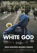 white_god movie cover