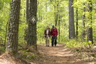 A Walk in the Woods movie photo