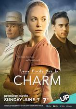 love_finds_you_in_charm movie cover
