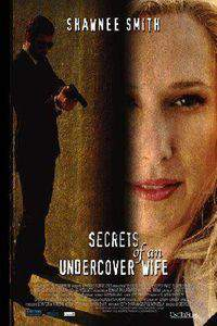 Secrets of an Undercover Wife main cover