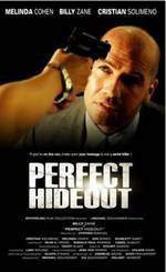 perfect_hideout movie cover