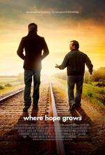 where_hope_grows movie cover