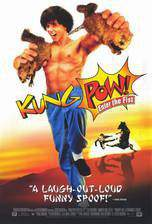 kung_pow_enter_the_fist movie cover
