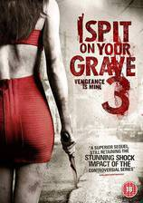 i_spit_on_your_grave_3_vengeance_is_mine movie cover