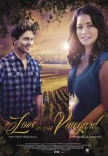 love_in_the_vineyard_heart_felt movie cover
