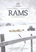 rams movie cover