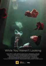 while_you_weren_t_looking movie cover