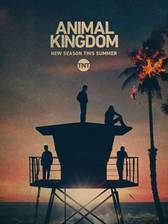 animal_kingdom_2016 movie cover