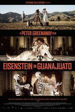 eisenstein_in_guanajuato movie cover