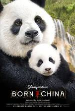 born_in_china movie cover