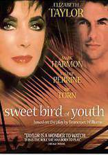 sweet_bird_of_youth movie cover