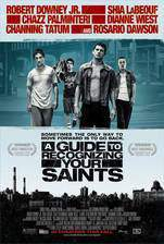 a_guide_to_recognizing_your_saints movie cover