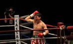 Bleed for This movie photo