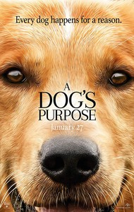A Dog's Purpose main cover