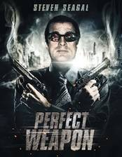 the_perfect_weapon movie cover