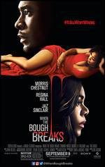 when_the_bough_breaks_2016 movie cover