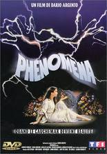 phenomena movie cover