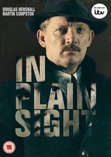 in_plain_sight_2016 movie cover