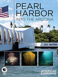 Pearl Harbor: Into the Arizona main cover
