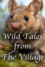 Wild Tales from the Village movie cover
