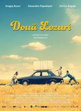 doua_lozuri_two_lottery_tickets movie cover