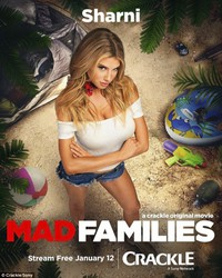Mad Families main cover