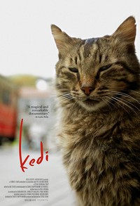 Kedi main cover