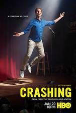 crashing_2017 movie cover