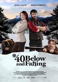 40 Below and Falling main cover