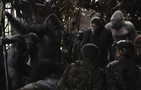 War for the Planet of the Apes movie photo