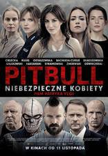 pitbull_tough_women movie cover