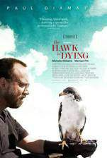 the_hawk_is_dying movie cover