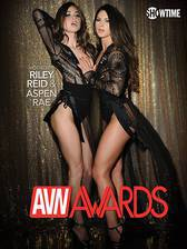 Best in Sex: 2017 AVN Awards movie cover