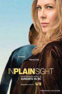 In Plain Sight movie cover