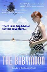 the_babymoon movie cover