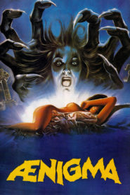 Aenigma: Lucio Fulci and the 80s main cover