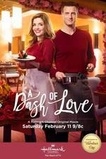 a_dash_of_love movie cover