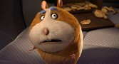 Animal Crackers movie photo