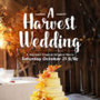 A HARVEST WEDDING movie photo